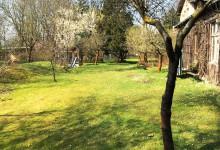Fotos: Garten